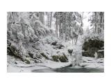 581CDABC-1831-4DC8-A945-E0D18F47EE9B Фотограф: Tsygankov Yuriy  Просмотров: 84 Комментариев: 0