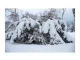 Название: _DSC4238 Фотоальбом: Зима... Категория: Пейзаж Фотограф: VictorV  Время съемки/редактирования: 2020:03:21 19:03:03 Фотокамера: SONY - DSLR-A900 Диафрагма: f/5.6 Выдержка: 1/2500 Фокусное расстояние: 280/10    Просмотров: 47 Комментариев: 0