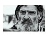 13N_9650_abbshf_w800 Фотограф: © marka  Просмотров: 1479 Комментариев: 0