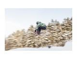 Название: IMG_0743 Фотоальбом: Тренировка, ски кросс 25.02.2018 Категория: Спорт Фотограф: Игорь Голубцов  Время съемки/редактирования: 2018:02:26 22:23:26 Фотокамера: Canon - Canon EOS 5D Mark II Выдержка: 1/100 Фокусное расстояние: 50/1    Просмотров: 426 Комментариев: 1