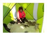 В палатке не холодно.. Фотограф: vikirin  Просмотров: 326 Комментариев: 0
