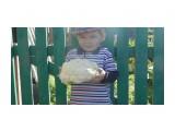 Название: P1000251 Фотоальбом: Малыш. Категория: Дети  Просмотров: 450 Комментариев: 0