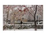 снег  Просмотров: 160 Комментариев: 1