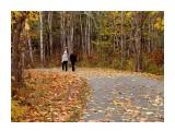 Осенний пейзаж  Просмотров: 419 Комментариев: