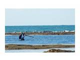 Море, везде море... Фотограф: VictorV  Просмотров: 858 Комментариев: 0
