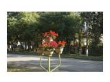 DSC03829 Фотограф: vikirin  Просмотров: 613 Комментариев: 0