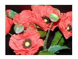 Керамическая флористика (цветы из холодного фарфора слепленные вручную) МАКИ  Просмотров: 745 Комментариев: 0