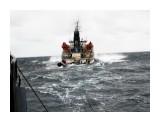 На бакштове Фотограф: 7388PetVlad Vik Получение топлива с танкера  Просмотров: 6834 Комментариев: 0