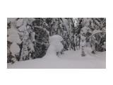 Зима на перевале.. Фотограф: vikirin  Просмотров: 1011 Комментариев: 0