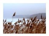 амурский залив Фотограф: фотохроник  Просмотров: 645 Комментариев: 0