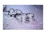 Название: Узоры морозные... Фотоальбом: УЗОРЫ МОРОЗНЫЕ... Категория: Природа Фотограф: vikirin  Время съемки/редактирования: 2010:12:02 22:53:28 Фотокамера: Canon - Canon EOS Kiss X3 Диафрагма: f/8.0 Выдержка: 1/640 Фокусное расстояние: 250/1 Светочуствительность: 400   Просмотров: 3161 Комментариев: 0