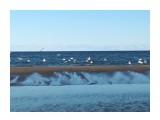 Охотское море Фотограф: vikirin  Просмотров: 130 Комментариев: 0
