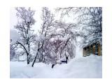 Когда шел снег.. Фотограф: vikirin  Просмотров: 2586 Комментариев: 0