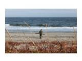 Набрали бревен на берегу..  Фотограф: vikirin  Просмотров: 1575 Комментариев: 0