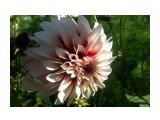 DSC_1039 Фотограф: vikirin  Просмотров: 960 Комментариев: 0
