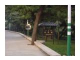 Название: IMGP0534 Фотоальбом: Китай.Шидао Категория: Туризм, путешествия  Время съемки/редактирования: 2010:09:12 11:36:35 Фотокамера: PENTAX Corporation - PENTAX Optio A20 Диафрагма: f/5.4 Выдержка: 1/200 Фокусное расстояние: 237/10 Светочуствительность: 200   Просмотров: 388 Комментариев: 0