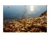 Название: Золото осени в воде Фотоальбом: Санкт-Петербург 2018 Категория: Туризм, путешествия  Время съемки/редактирования: 2018:10:25 22:21:42 Фотокамера: Canon - Canon EOS 7D Диафрагма: f/7.1 Выдержка: 1/500 Фокусное расстояние: 28/1    Просмотров: 224 Комментариев: 0