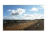 Побережье Охотского моря. Отлив.  Просмотров: 222 Комментариев: 0