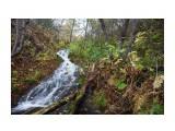 Название: DSC08732 Фотоальбом: Водопады, пороги и т.д. Категория: Пейзаж Фотограф: VictorV  Время съемки/редактирования: 2021:10:16 21:20:35 Фотокамера: SONY - SLT-A99 Диафрагма: f/9.0 Выдержка: 1/6 Фокусное расстояние: 240/10    Просмотров: 17 Комментариев: 0