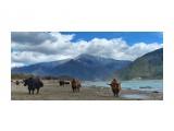 Название: mmexport1552991757581 Фотоальбом: Тибет Категория: Туризм, путешествия  Время съемки/редактирования: 2019:03:19 15:42:42 Фотокамера: Apple - iPhone XS Max Диафрагма: f/1.8 Выдержка: 1/3788 Фокусное расстояние: 17/4    Просмотров: 335 Комментариев: 0