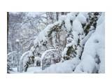 Название: _DSC4241 Фотоальбом: Зима... Категория: Пейзаж Фотограф: VictorV  Время съемки/редактирования: 2020:03:21 19:02:29 Фотокамера: SONY - DSLR-A900 Диафрагма: f/4.5 Выдержка: 1/2500 Фокусное расстояние: 1350/10    Просмотров: 31 Комментариев: 0