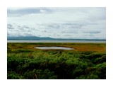 Прибрежные болотистые озерца.....пахнут сероводородом...  Фотограф: vikirin  Просмотров: 4414 Комментариев: 0