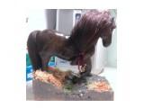 лошадь на заказ (полностью ручная работа)  Просмотров: 3085 Комментариев: 0
