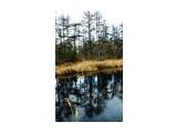 р. Кырлин 1 Фотограф: Дейкин Владимир  Просмотров: 888 Комментариев: 0