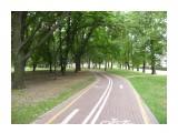 Дорожка для велосипедистов в парке Янки Купавы. Фотограф: viktorb  Просмотров: 890 Комментариев: 0