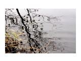 DSC03756 Фотограф: vikirin  Просмотров: 476 Комментариев: 0