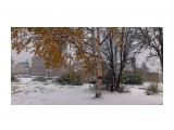 Название: Первый снег Фотоальбом: ОСЕНЬ... Категория: Природа Фотограф: vikirin  Время съемки/редактирования: 2013:10:17 17:47:57 Фотокамера: Sony Ericsson - ST18i Диафрагма: f/2.4 Выдержка: 10/1600 Фокусное расстояние: 410/100    Просмотров: 1654 Комментариев: 0