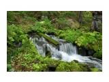 Исток озера. Водопадик выше озера метров на десять вытекает прям с горы.  Просмотров: 2812 Комментариев: