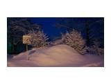 Однажды весной в 6 утра.. пошел снег.. Фотограф: vikirin  Просмотров: 1760 Комментариев: 0