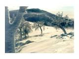 Название: Сахалин080 Фотоальбом: Сахалин Категория: Природа  Просмотров: 1087 Комментариев: 0
