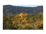 Рання осень на Набиле Фотограф: vikirin  Просмотров: 1488 Комментариев: 0