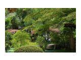 сады киото Фотограф: marka  Просмотров: 521 Комментариев: 0
