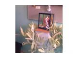 Название: Фото0542 Фотоальбом: Дар Дарумы: выставка, посвященная чайной церемонии Категория: Разное  Фотокамера: Nokia - 6700c-1    Просмотров: 433 Комментариев: 0