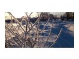 Однажды морозным утром  Просмотров: 1009 Комментариев: 0