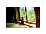 В старом зимовье Фотограф: В.Дейкин  Просмотров: 712 Комментариев: 2