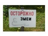 Владивосток. Ботанический сад Фотограф: vikirin  Просмотров: 525 Комментариев: 0