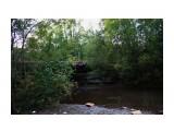 Название: Северные речушки Фотоальбом: 2012 Брусника на Чамге Категория: Природа Фотограф: vikirin  Время съемки/редактирования: 2012:09:20 01:12:55 Фотокамера: Canon - Canon EOS Kiss X3 Диафрагма: f/3.5 Выдержка: 1/20 Фокусное расстояние: 18/1    Просмотров: 1864 Комментариев: 0