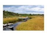 Северные торфяные ручейки в прибрежной зоне.. Фотограф: vikirin  Просмотров: 3459 Комментариев: 1