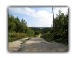 Лесная дорога...  Просмотров: 1010 Комментариев: 0