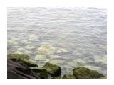 Название: а-морэ-морэ-морэ морэ-мо Фотоальбом: Автотур 2014 Категория: Море  Время съемки/редактирования: 2013:08:28 18:22:14 Фотокамера: SAMSUNG - SAMSUNG ES20/ VLUU ES20/ SAMSUNG SL35 Диафрагма: f/5.5 Выдержка: 1/173 Фокусное расстояние: 19620/1000    Просмотров: 449 Комментариев: 1