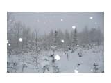 Название: Снег Фотоальбом: Зима Категория: Пейзаж  Время съемки/редактирования: 2012:11:24 11:38:56 Фотокамера: Panasonic - DMC-TZ3 Диафрагма: f/3.3 Выдержка: 10/13000 Фокусное расстояние: 46/10    Просмотров: 218 Комментариев: 0