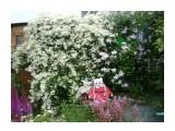 P1010894 Фотограф: к982  Просмотров: 1719 Комментариев: 0