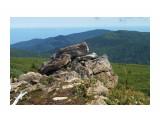 Название: PICT2929 Фотоальбом: Гора Быкова - высота 954 метра Категория: Природа Фотограф: VictorV  Время съемки/редактирования: 2008:09:09 00:05:56 Фотокамера: KONICA MINOLTA - ALPHA-7 DIGITAL Диафрагма: f/10.0 Выдержка: 2500/1000000 Фокусное расстояние: 75000000/1000000 Светочуствительность: Array   Просмотров: 1734 Комментариев: 0