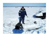 Зимняя рыбалка на Лунском.. Фотограф: vikirin  Просмотров: 1995 Комментариев: 0
