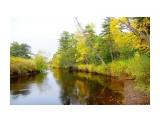 Река Пильтун Фотограф: В.Дейкин  Просмотров: 1372 Комментариев: 0