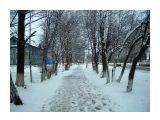 14 мая ,верба цветет,вчера была метель Фотограф: vikirin  Просмотров: 2390 Комментариев: 0